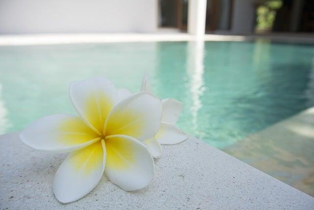 fleur à côté d'un bassin de spa