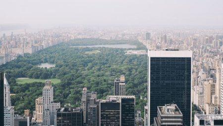 paysage de central park